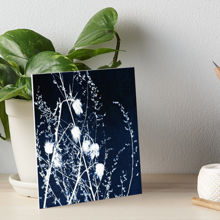 White thistles silhouette dark blue mini print wall art